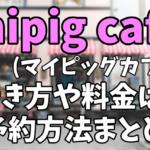 【マイクロブタカフェ】mipig cafe(マイピッグカフェ)原宿店への行き方は?予約方法や料金まとめ