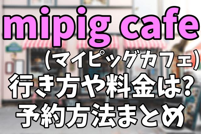 【マイクロブタカフェ】mipig cafe(マイピッグカフェ)への行き方 予約方法や料金まとめ