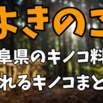 郷土料理「よきのこ」とは?岐阜県のオススメのキノコ料理や採れるキノコまとめ!【ナゼそこ】1月14日放送