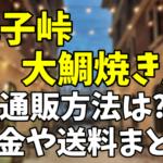 【世界で1番大きい鯛焼き】丸子(まりこ)峠大鯛焼き屋の通販方法は?料金や送料まとめ