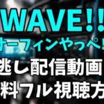 アニメ「WAVE!!~サーフィンやっぺ!!~」を見逃し配信動画で無料フル視聴する方法